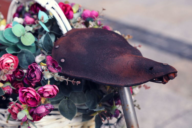 Close-up of old bicycle seat by roses