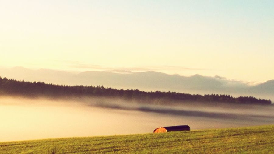 Agriculture Nature Landscape Fog Mountain No People Beauty In Nature Dawn Nebel Alpen, Tranquility