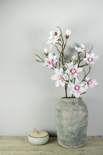 flowers in a jar decoration at home Interior Decorating Close-up Color Day Decoration Flower Flower Head Fragility Freshness Indoors  Interior Jar No People Shelf Table Vase