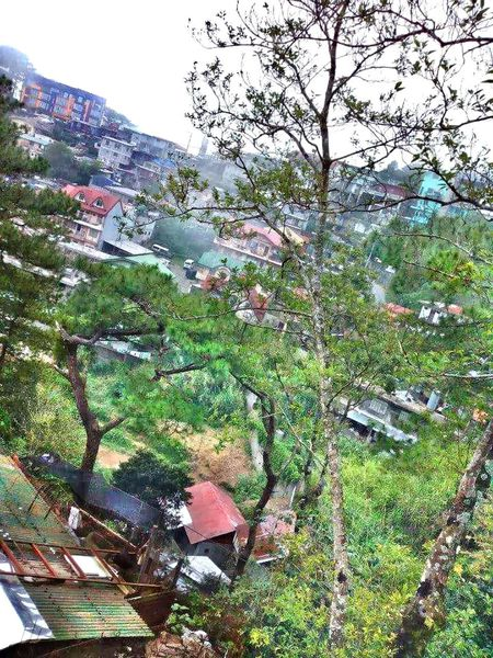 Flying High Beauty In Nature Baguio City, Philippines Vacation Mode 2013 Journey