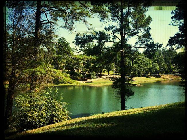 Vanity Fair lake First Eyeem Photo