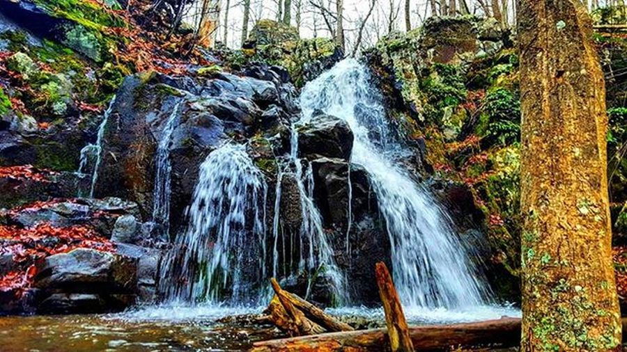 Just go with the flow 😊 Picoftheday Photooftheday Waterfallwednesday Exploreva Instagood Outdoorwomen Outdoorlife Waterfallsfordays Seekthetrails Alpinebabes Radgirlslife Lifeofadventure Thatadventurelife AdventureThatIsLife Neverstopexploring  WeLiveToExplore Wanderlust Shenandoah Quote Inspiration Travelbug Thiswanderer Wildseekers Blueridgemountains ChasingWaterfalls myfavtourlina outdooradventurephotos rei1440project liveauthentic