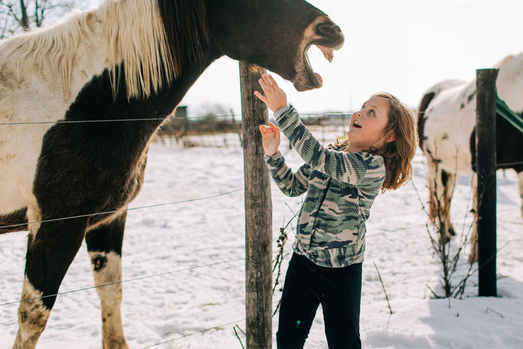 Horse laughing with young girl
