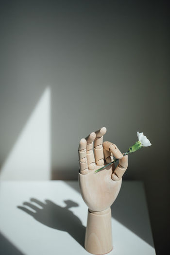 Close-up of hand holding white flower on table