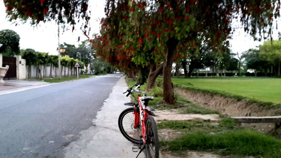 Nothing beats cycling on a lazy Sunday evening Cycling Weekend Red&green