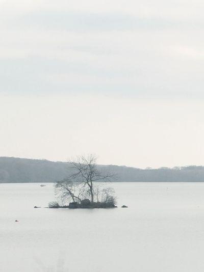 tranquil scene