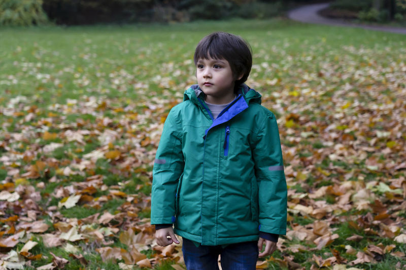 Boy looking away while standing on land during autumn