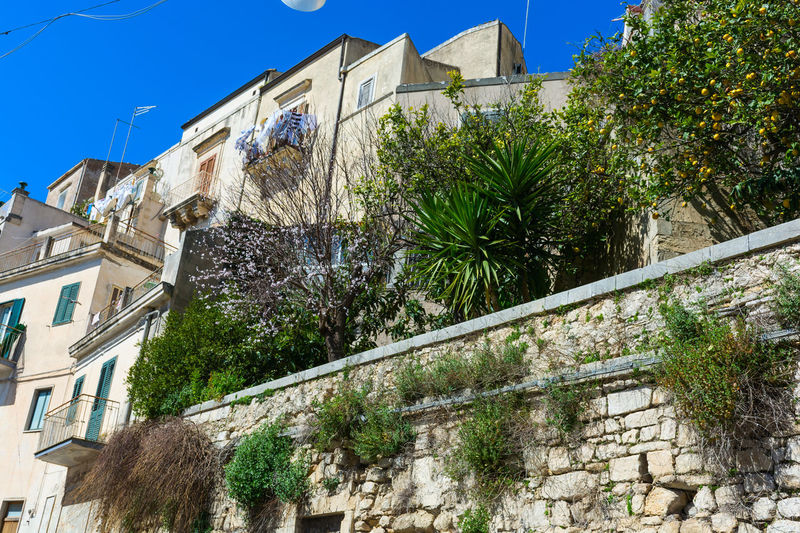 Ragusa - Scorcio Italiano Ragusa Ibla, Sicily Architecture Blue Building Exterior Built Structure City Clear Sky Day Growth House Low Angle View Nature No People Outdoors Palm Tree Ragusa Ragusa Ibla Ragusaibla Residential Building Sky Town Tree