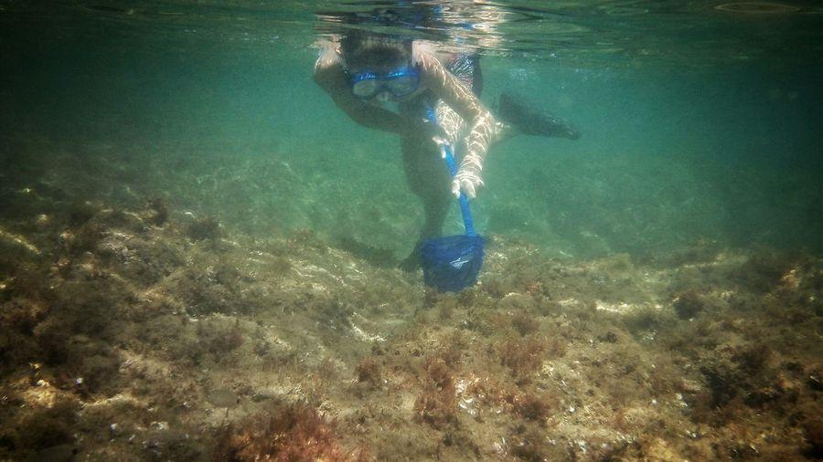 52706 98106 98685 1232 842406 59662 16 12422 183139 497806 People Of The Oceans Underwater