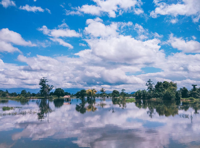 flood and going to rain again Arrival Backgrounds Beauty In Nature City Cloud - Sky Day Extreme Weather EyeEmNewHere Flood Forest Lake Landscape Miles Away Natural Disaster Nature No People Outdoors Reflection Reflection Lake Scenics Sky Travel Destinations Tree Water Blue Color The Great Outdoors - 2017 EyeEm Awards The Photojournalist - 2017 EyeEm Awards