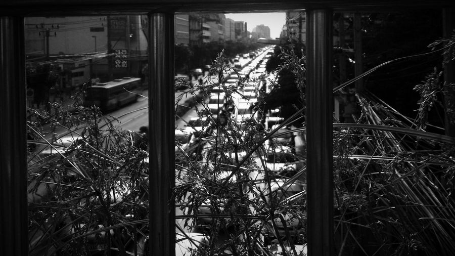 Cityscapes Citygarden Overbridge Traveling Traffic Jam Enjoying Life Beautiful Nature Garden Photography Streetphotography Blackandwhite