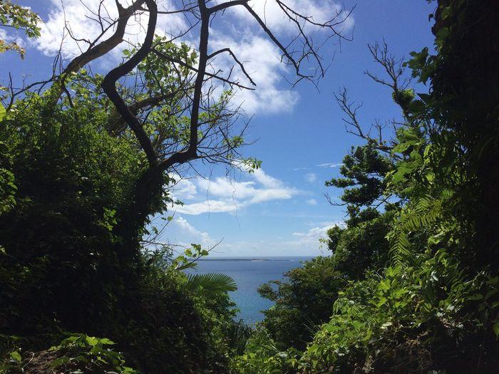 Nofilter Relaxing Green Sky Sea Enjoying Life Blue EyeEm Nature Lover Seifa Utaki Okinawa