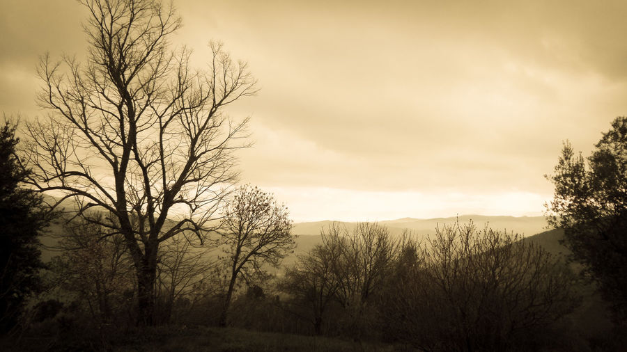 Hills Nature