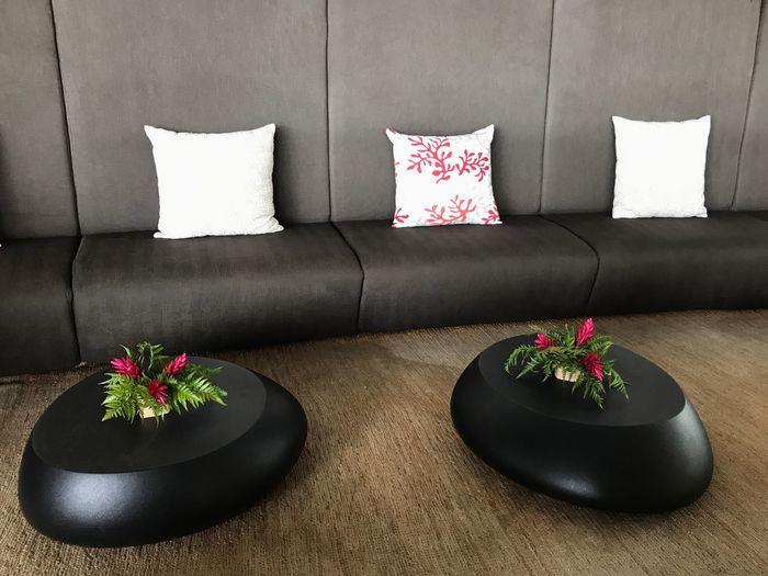 Salon Salle D'attente Lounge Coussins Rouge Et Blanc Blanc Et Rouge Table Basse Bouquets De Fleurs Bouquet De Fleurs Vert Et Rouge Blanc Rouge Vert Gris Noir Banquette Table The Week On EyeEm