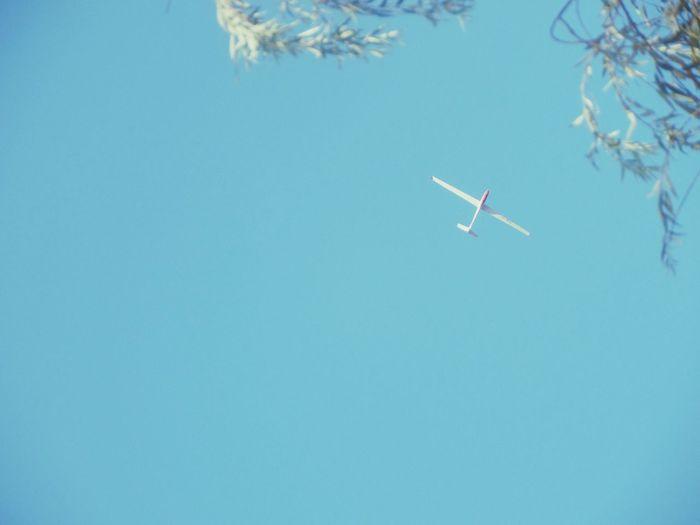Hi ! Wanna be my plane? HAHA Air Plane Plane Sky Nature