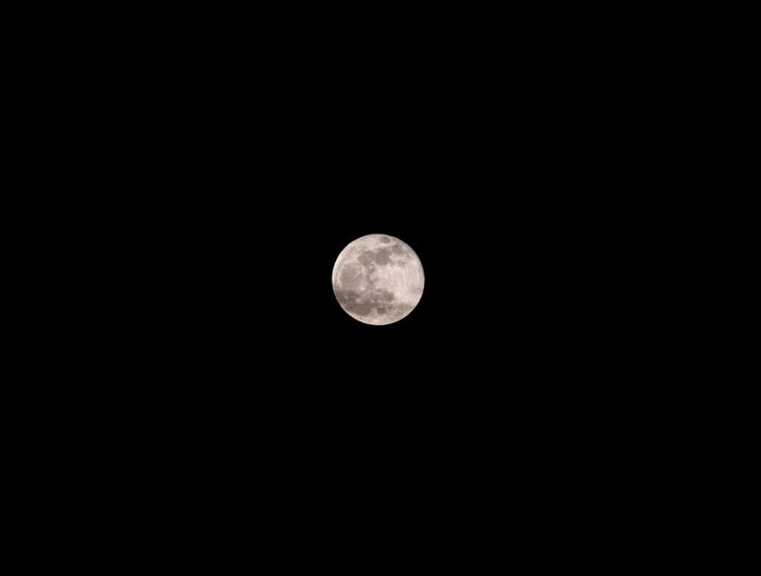 Moon Space Moon Astronomy Sky Beauty In Nature Night Planetary Moon Tranquility Scenics - Nature Copy Space Tranquil Scene Low Angle View Clear Sky Full Moon Circle Geometric Shape Shape Idyllic Nature Dark Outdoors Astrology Space And Astronomy Moon Moonlight