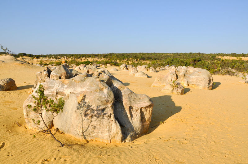 Rock Formations On Field Against Clear Sky