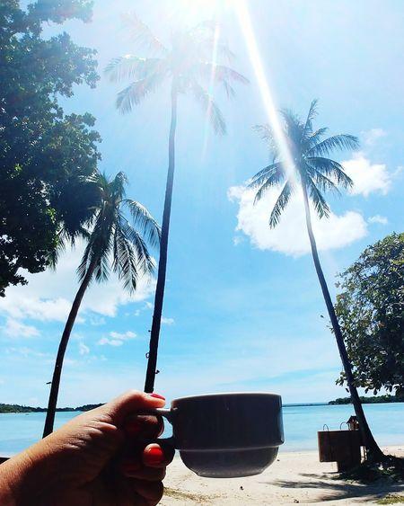 Coffee Coffee Cup Morning EyeEm Nature Lover EyeEm EyeEm Best Shots Landscape Sea And Sky EyeEm Of The Week Human Hand Tree Water Beach Sea Sunlight Holding Sky Cloud - Sky Summer Exploratorium