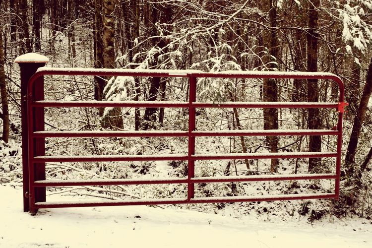 Pattern Pieces Gates Fencing Snow Winter Red Driveway MyPhotography Nikonphotography Eyeemphotography Myperspective Farmequipment Theellijays Nature Woods Biggerphotography