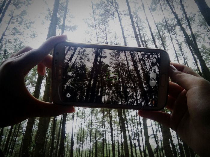 GunungPancar Photography Photo Photograph Amateurphotography Amateur