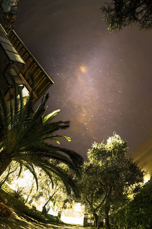 Galaxie  Nachtfotografie Night Photography Nightphotography Astrofotografia Astronomy Astrophotography Beauty In Nature Fotografia Notturna Galassia Galaxies Growth Low Angle View Milchstrasse Milky Way Nature Night No People Outdoors Palm Tree Sky Stars Stelle  Tree Via Lattea