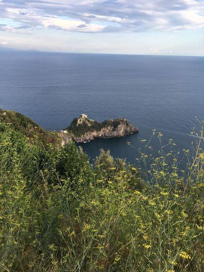 Amalfi Coast Amalficoast Beach Beauty In Nature Cloud - Sky Concadeimarini Day Growth Horizon Over Water Land Nature No People Non-urban Scene Scenics - Nature Sea Sky Tranquil Scene Water