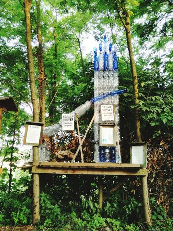 Man Made Object Nature Nature_collection Handmade Plastic Bottle Plastic Art And Craft Art is Everywhere Tree Growing Information Sign Blooming