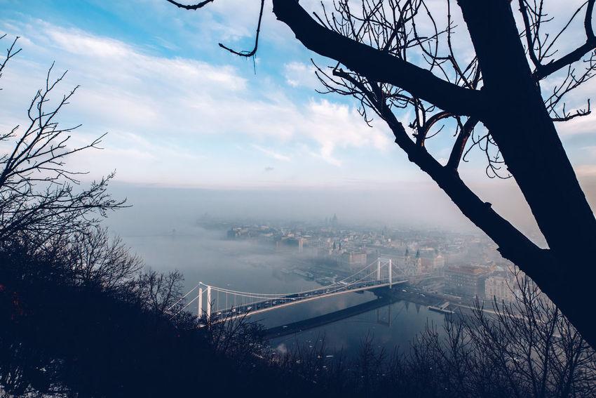 Meltdown Bridge - Man Made Structure City Cityscape Danube Fog Foggy Morning Urban Skyline Winter
