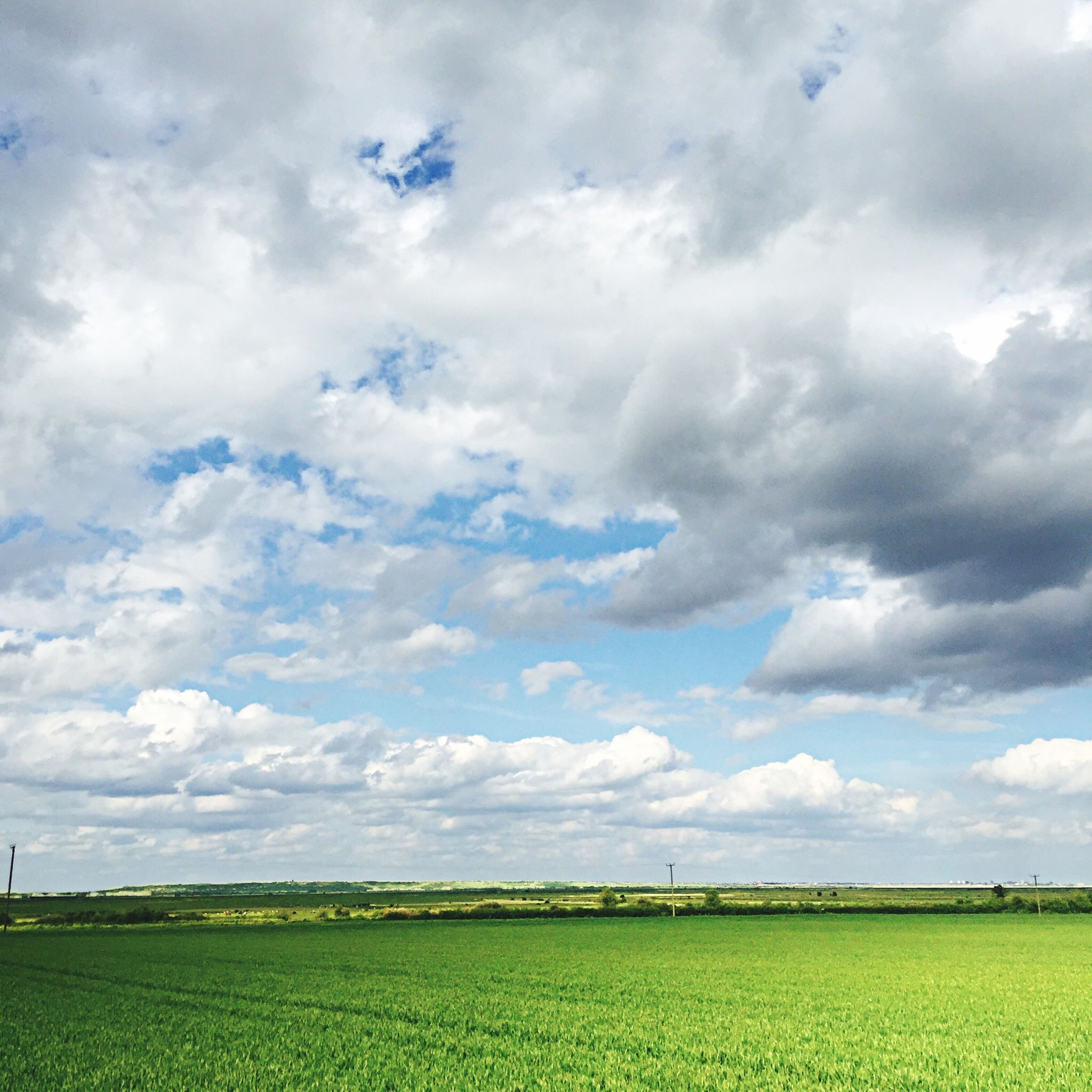 field, agriculture, landscape, rural scene, sky, tranquil scene, farm, tranquility, scenics, beauty in nature, crop, nature, cloud - sky, growth, horizon over land, cultivated land, cloudy, cloud, grass, day