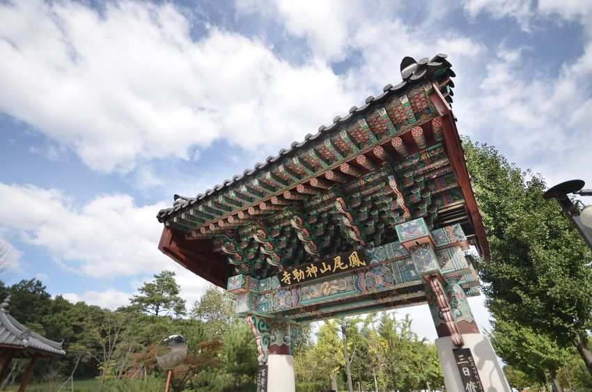 KOREA Door Temple Korea Low Angle View Cloud - Sky Architecture Sky Built Structure Day Building Exterior Tree Place Of Worship Spirituality Roof Growth Travel Destinations No People Outdoors Religion History Nature The Architect - 2018 EyeEm Awards
