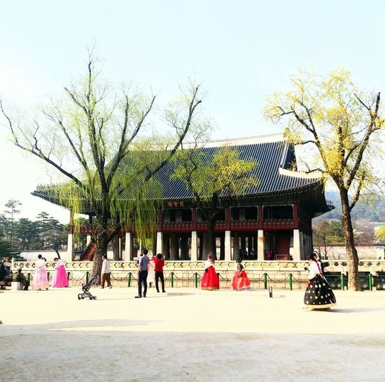 Built Structure Architecture Building Exterior Real People People Tree Leisure Activity Day Sky Adults Only Outdoors Women Large Group Of People Men Adult History Cityscape Korean Traditional Architecture Korean Culture Korean Loyalpalace City Tourism