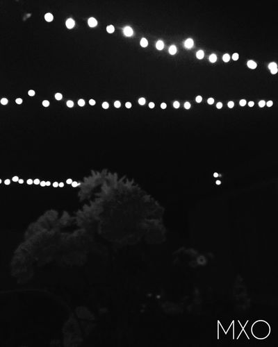 The lights will follow you into the dark. Blackandwhite Mphotographyxo Mxo Photography Black And White Black & White Flowers Lights Nightphotography