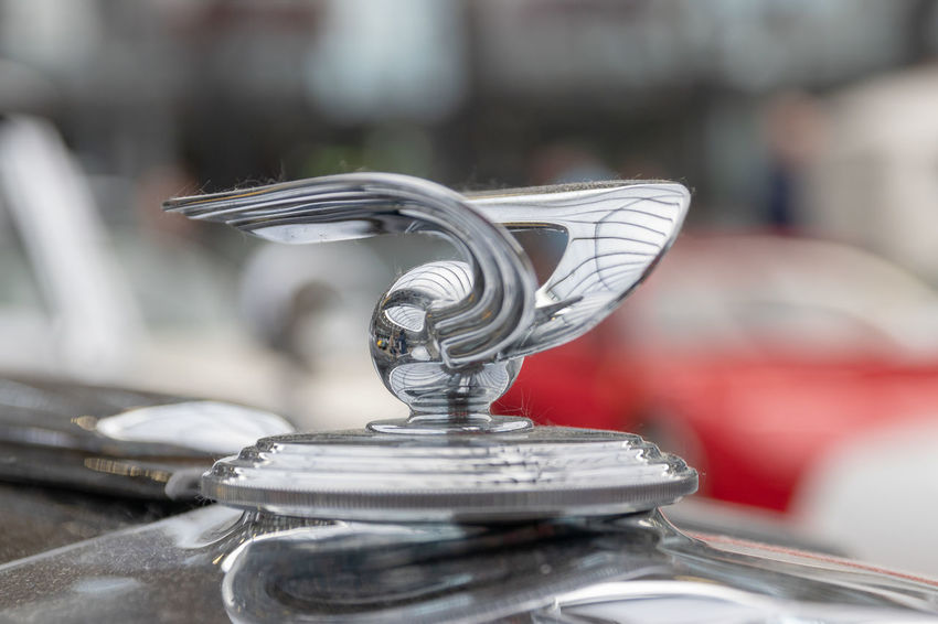Hood ornament of a vintage Horch car, Classic Remise. Classic Car Close-up Focus On Foreground Horch Luxury Metal No People Selective Focus Silver - Metal Silver Colored Steel Vintage Cars