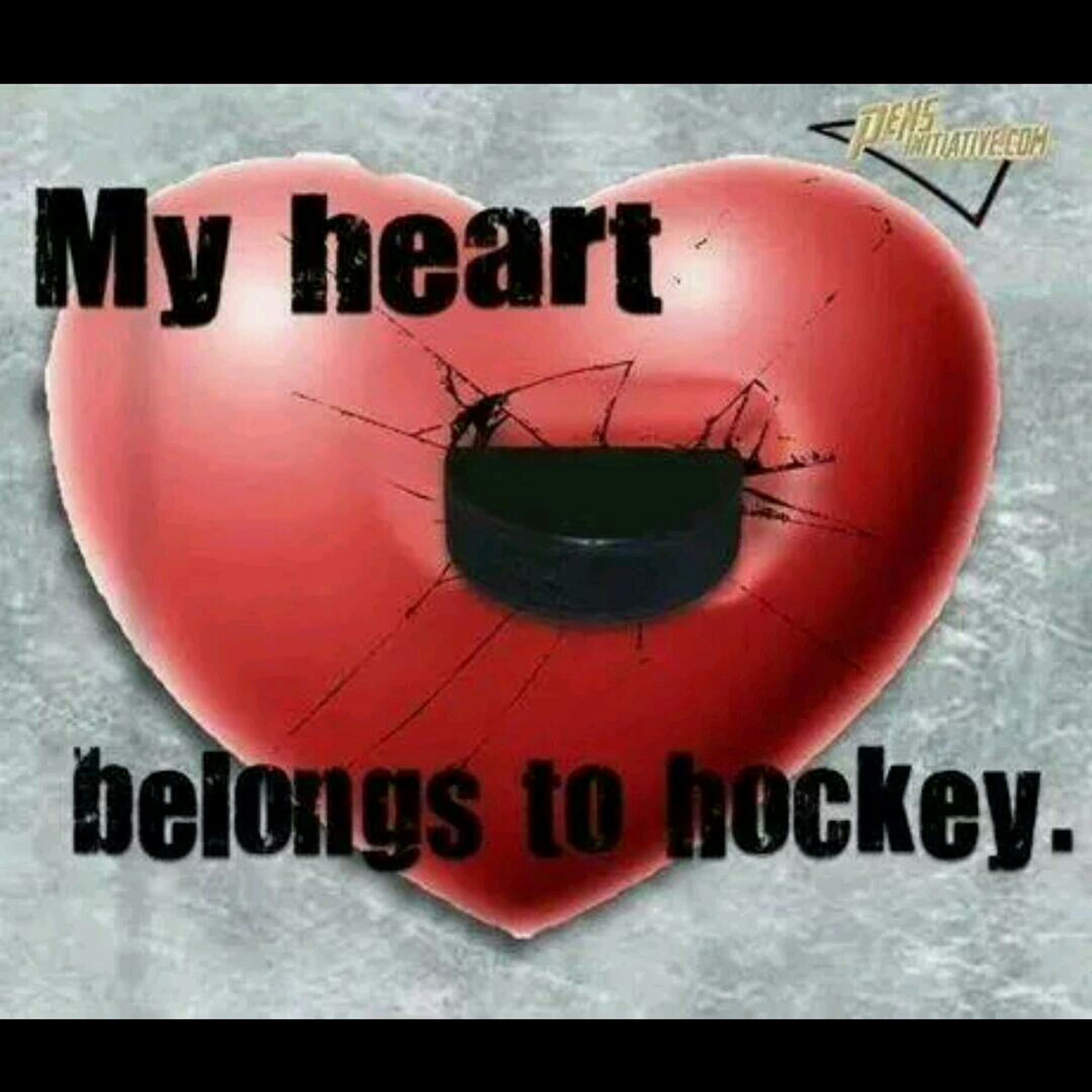 Lausanne Hockey Club ❤ Un Canton - Une Ville - Un Club ❤ My Team Passion Hockey:)<3 Ice Hockey