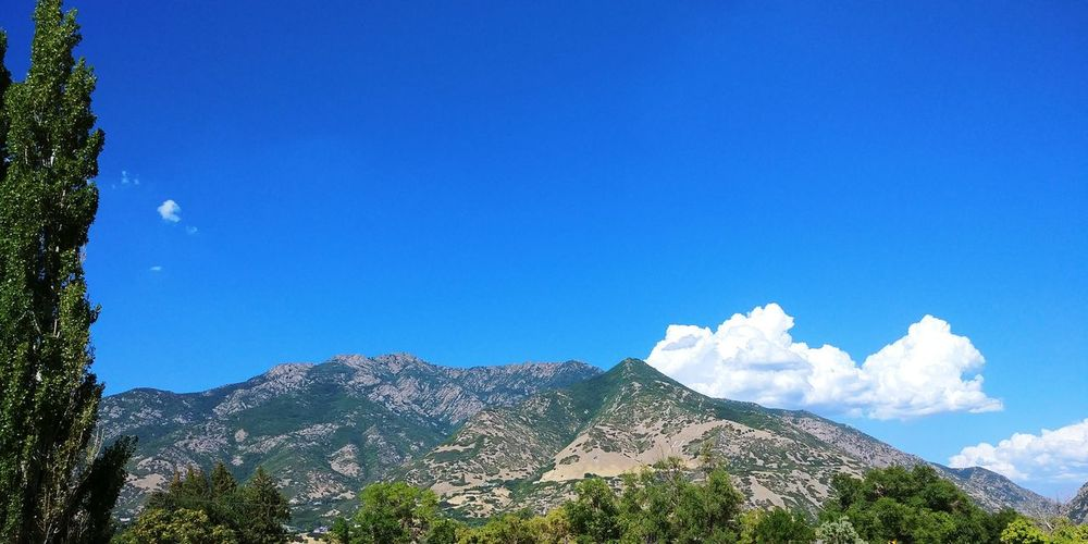 Mountain Sky Nature Blue Beauty In Nature Outdoors Day Tree WasatchFront Summer Sunny Cloud