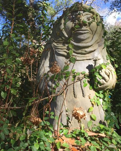 Strange statue in my neighbors overgrown yard. Art And Craft Sculpture Tree Human Representation Plant Outdoors Statue Low Angle View No People Growth Day Religion Flower Leaf Nature Spirituality (null)