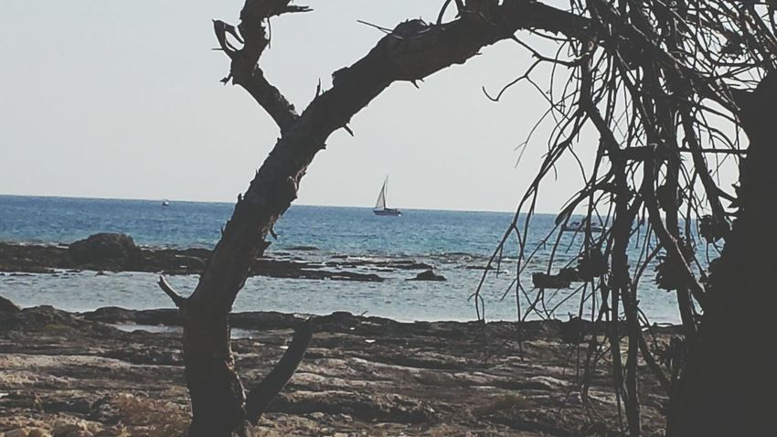 Beachview On The Beach Beach Frame Framed Eingerahmt Rahmen Segelschiff