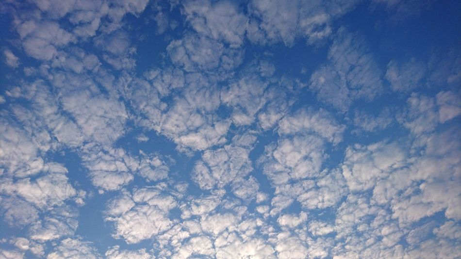 Clouds I. Hamburg Germany Hh Clouds Clouds And Sky Below The Clouds Blue And White White And Blue Sky Blue Backgrounds Full Frame Sky Textured  Nature Cloud - Sky
