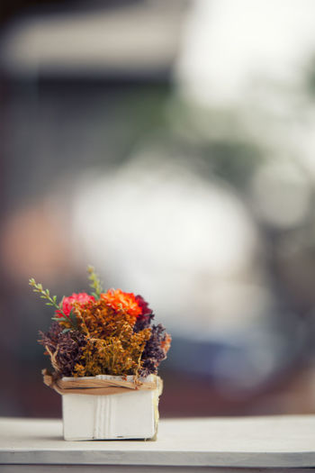 Freshness Flowering Plant Flower Plant Table Focus On Foreground No People Close-up Food And Drink Nature Day Food Still Life Indoors  Ready-to-eat Selective Focus Potted Plant Sweet Food Beauty In Nature Temptation Bouquet Flower Arrangement Snack