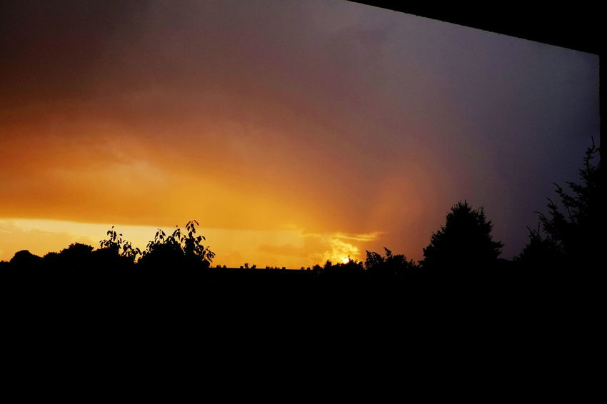 Sunset in Stormy Weather Sunset_collection Zachód Słońca Beauty In Nature Landscape Nature No People Outdoors Scenics Silhouette Sky Sundown Sundown, Nightfall, Close Of Day, Twilight, Dusk, Evening Sunset Tranquil Scene Tranquility Tree