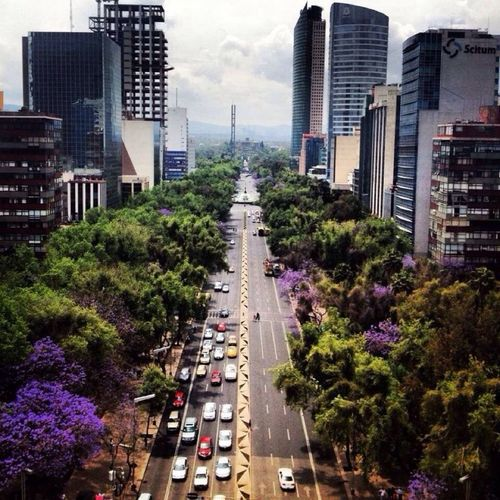 Mexico City, Av. reform