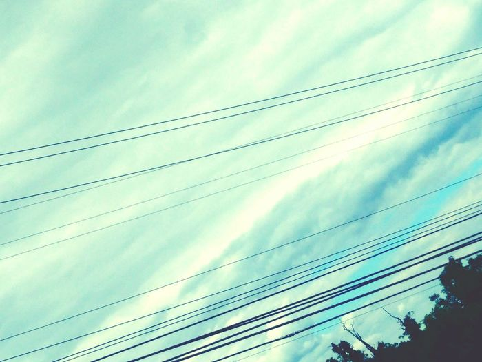 Blue sky luving Cable Cloud - Sky Sky Power Line  Electricity  No People Outdoors Telephone Line Nature Day Power Supply Low Angle View Technology Parallel Electricity Pylon Beauty In Nature Bird First Eyeem Photo