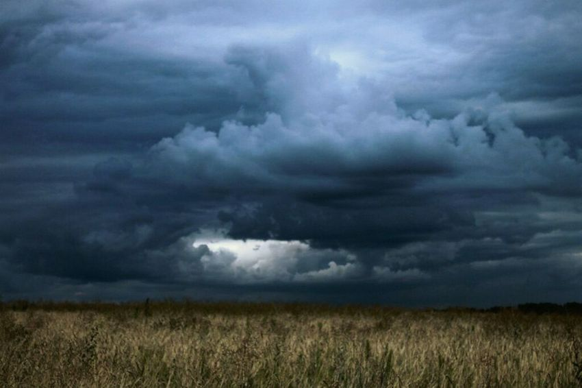 ⚡ Oldphoto Ukraine Canon Nature CloudsStorm Sky Landscape Photo Wheat Field