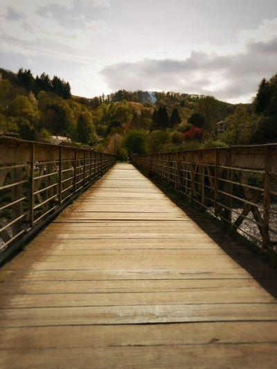Forest Footbridge Sky Nature Outdoors Bridge Wales