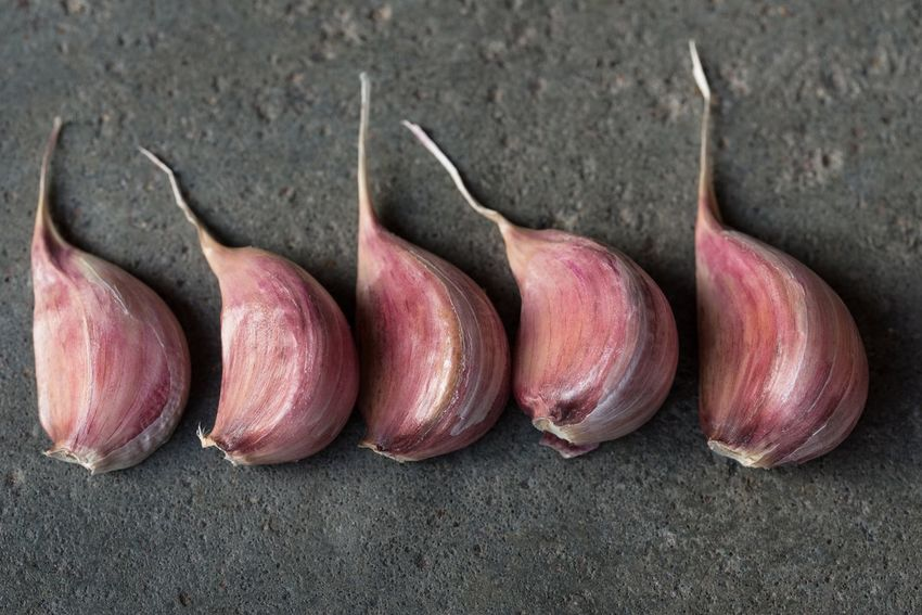 Garlic cloves No People Healthy Eating Food Close-up Top View Rustic Garlic Cloves Bulbs Lined Up Organized