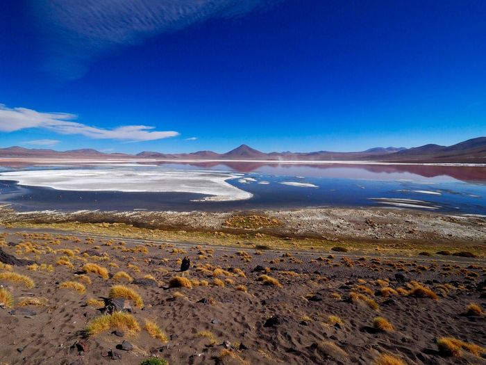 Latina Colorada Bolivia Nature Beauty In Nature Scenics Tranquility Tranquil Scene Blue Outdoors Landscape