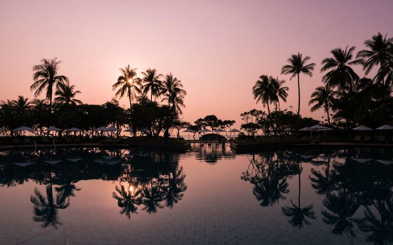Reflection of silhouette trees in swimming pool against sky during sunset