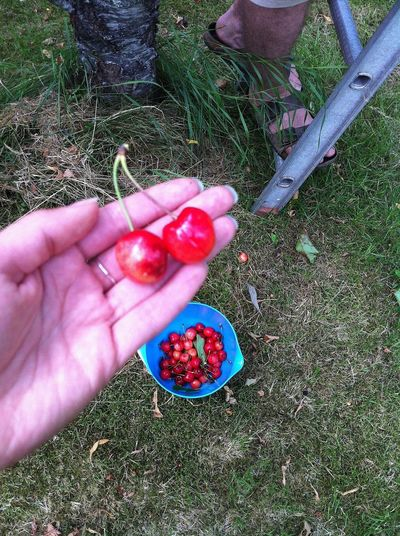 07/20/13 I picked one 1/100000 of what you will pick. 12:30