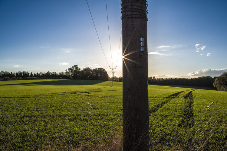 pole position Field Sky Landscape Land Plant Green Color Grass Environment Agriculture Rural Scene Tranquil Scene Nature Tranquility Scenics - Nature Beauty In Nature Sunlight Growth Crop  No People Cloud - Sky Sun Outdoors Electricity  Lens Flare Plantation