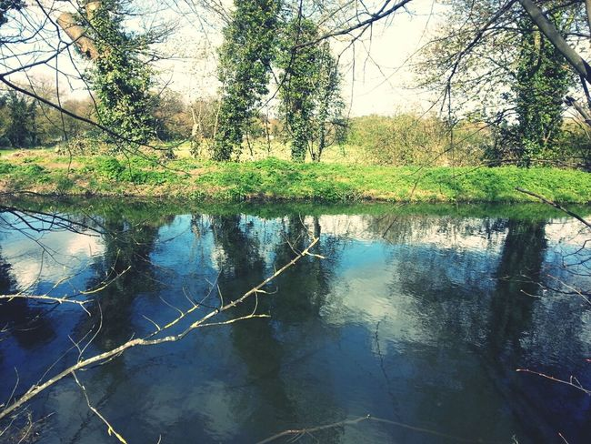 Reflections By The River Water_collection Markeaton Street